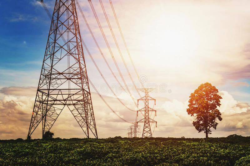 high voltage power supply and power line with sunrise and tree background royalty free stock photography