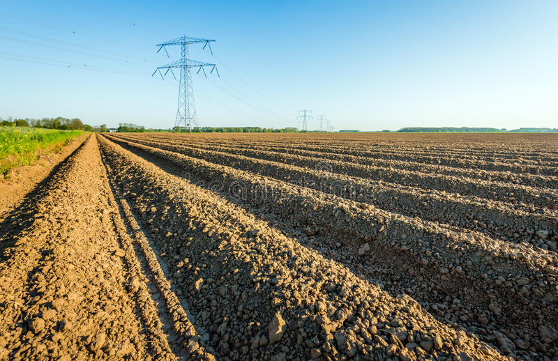 High voltage pylons in an agricultural landscape in the Netherlands royalty free stock photo
