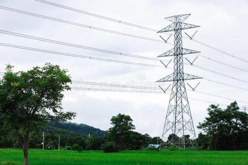 High voltage tower. Electricity post. Electric post. High voltage lines and power pylons in rice field royalty free stock photo