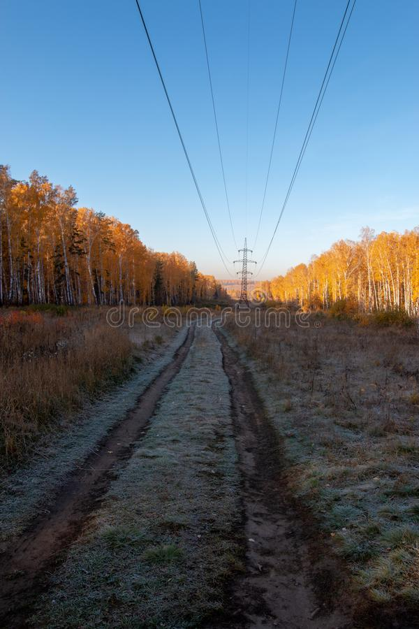 High voltage transmission line. In the forest royalty free stock photography