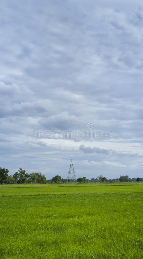 High voltage transmission towers construction with farm landscape. Agricultural, agriculture, backgrounds, beautiful, blue, cable, cloud, clouds, communications stock photo