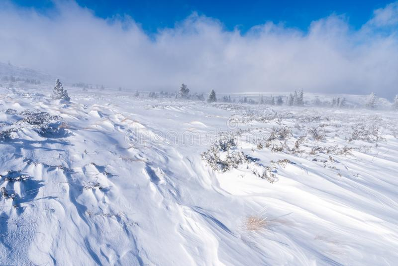 Snow and strong winds cause blizzard conditions on mountains royalty free stock photography