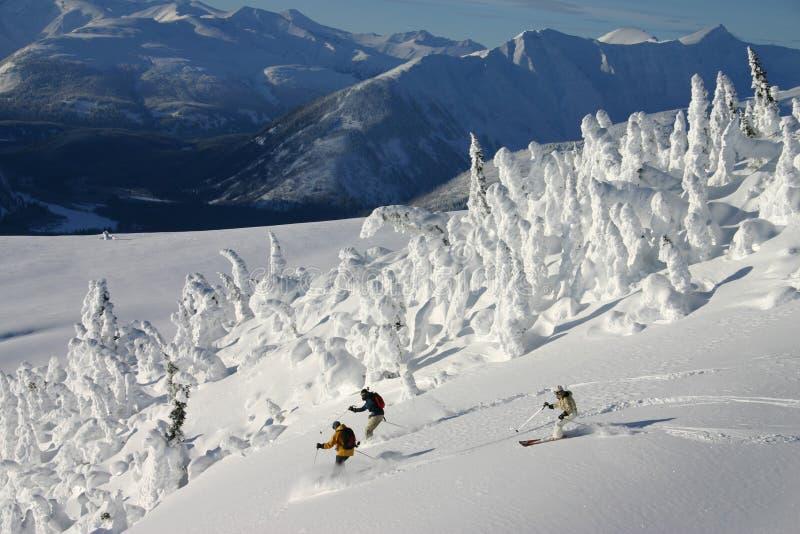 highen skidar arkivfoton