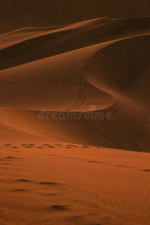 The highest sand dunes in the world at sunset in Namib Desert, in the Namib-Nacluft National Park in Namibia. stock photography