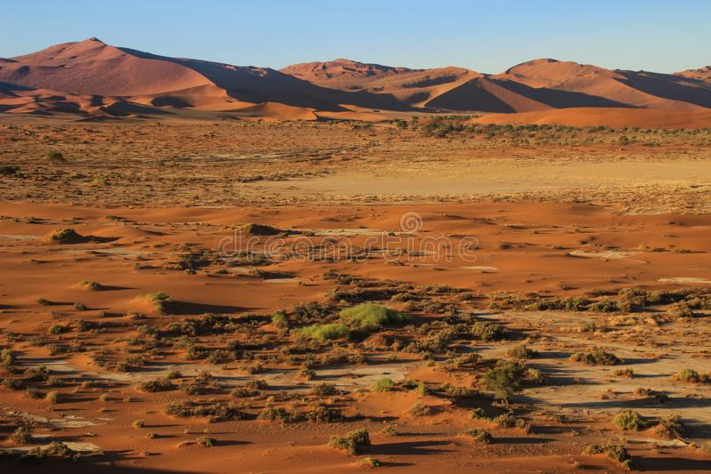The highest sand dunes in the world at sunset in Namib Desert, in the Namib-Nacluft National Park in Namibia. stock photos