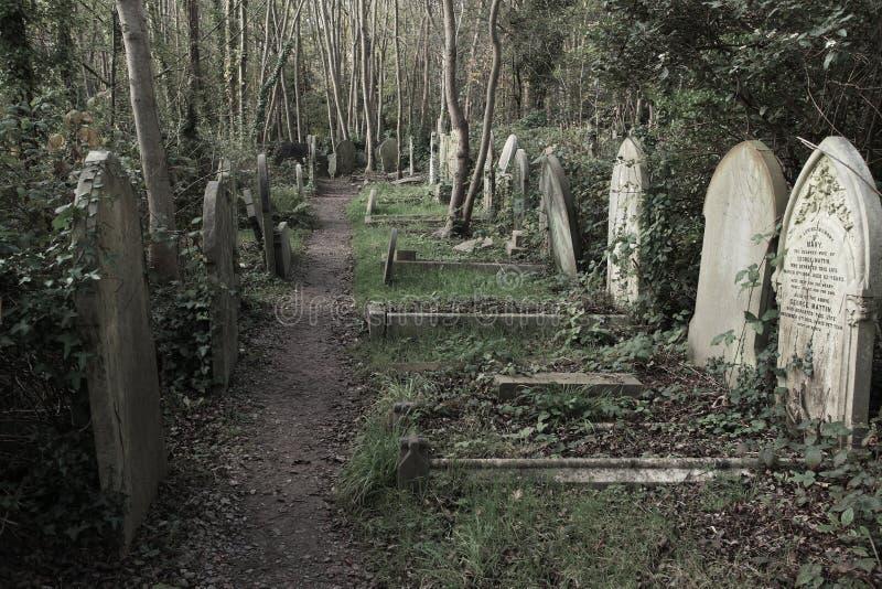 Highgate cmentarz w Londyn obrazy royalty free