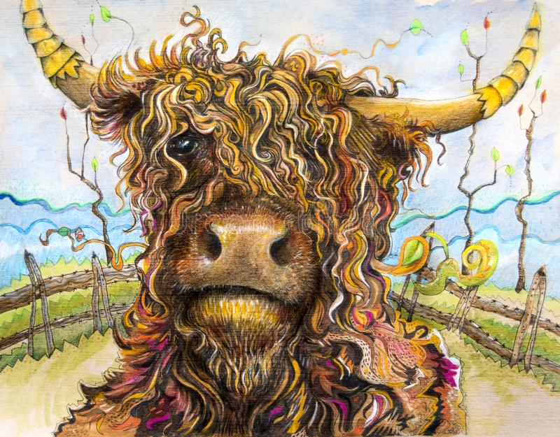 Highland cow with curly hair art. An artistic drawing of a curly haired highland cow in a field with a fence in the background. A whimsical portrait of this stock illustration
