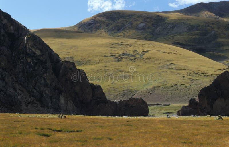 Highlands stock image