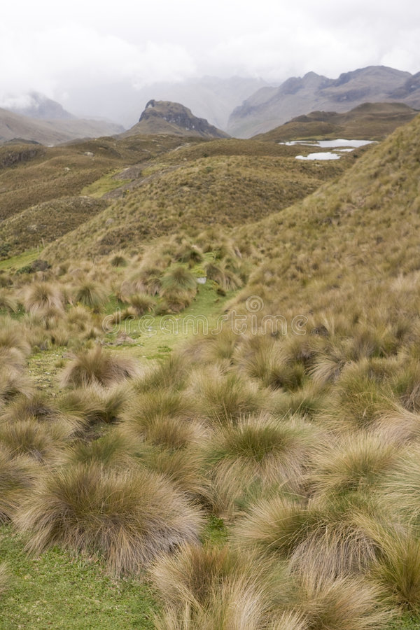 Download Highlands of Ecuador stock photo. Image of overview, layer - 7529208