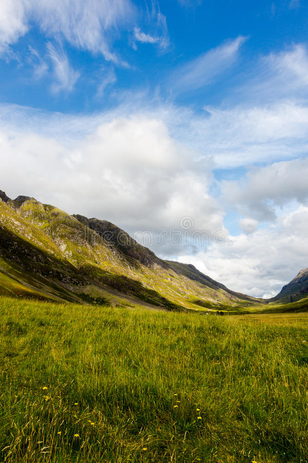 Highlands in Scotland with green meadows, blue sky and white clouds. Vertical crop, low angle perspective stock image