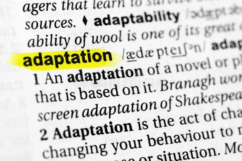 Highlighted English word `adaptation` and its definition in the dictionary.  royalty free stock image