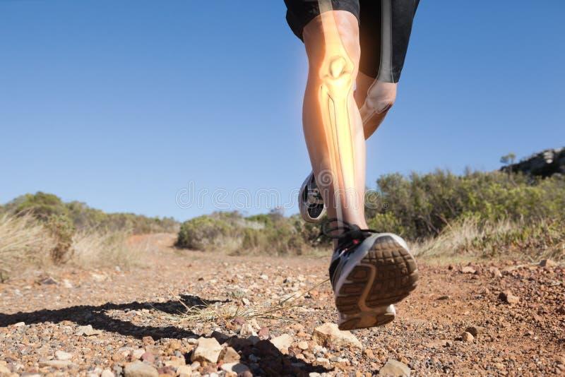 Highlighted leg bones of jogging man. Digital composite of Highlighted leg bones of jogging man stock photography