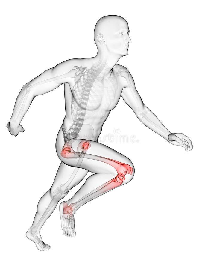 Highlighted runner joints. 3d rendered illustration - runners joints royalty free illustration