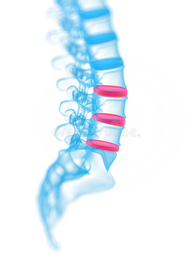 Download Highlighted vertebrae stock illustration. Image of health - 23711172
