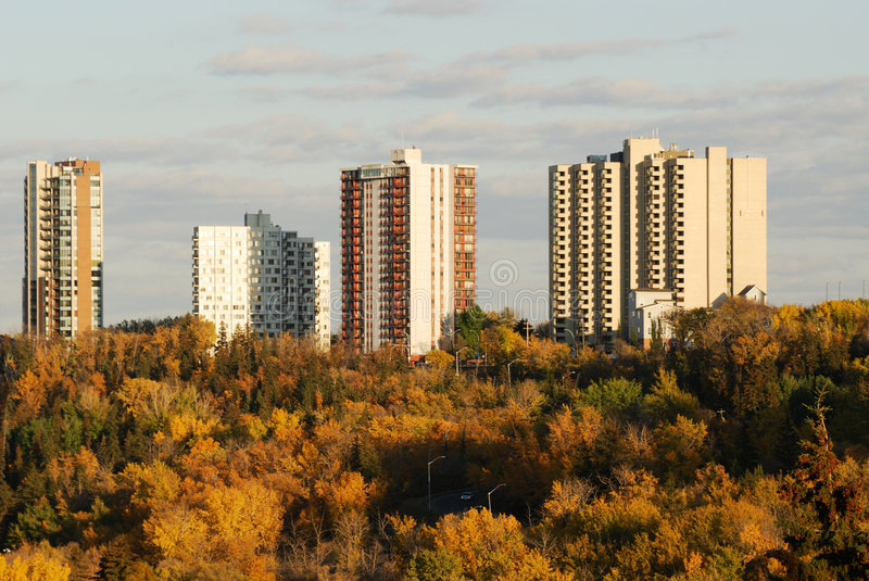 Highrise apartments. Autumn view of highrise apartments and colorful forests in the north saskatchewan river valley, edmonton, alberta, canada royalty free stock photo
