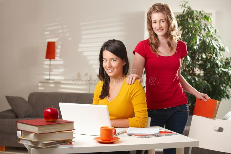 Highschool Kursteilnehmer, die Laptop betrachten stockbild