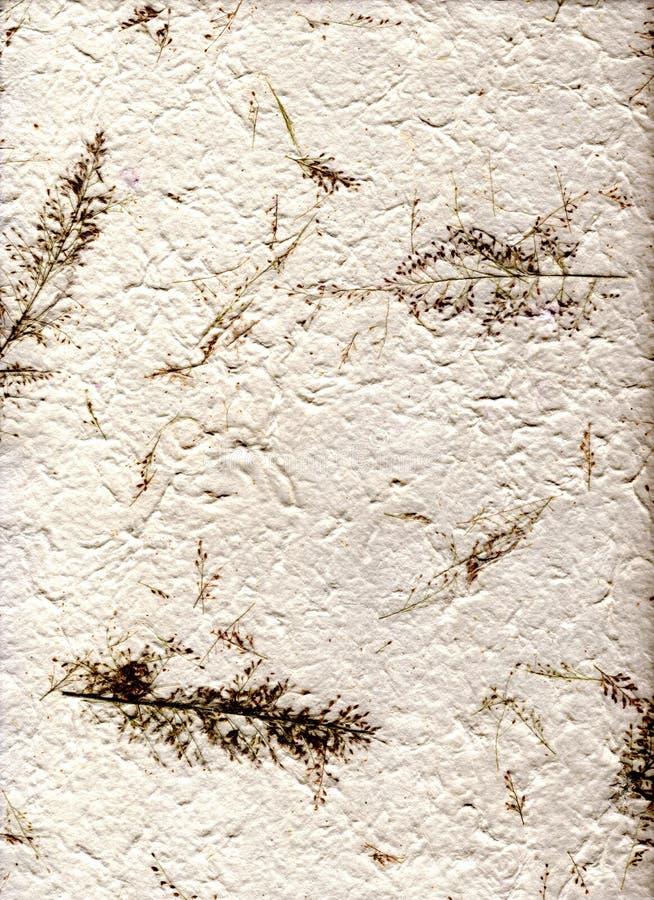 hight выходит естественное бумажное разрешение стоковая фотография