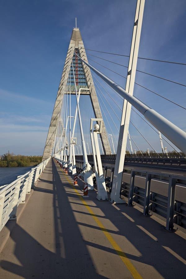 Download Bridge stock image. Image of motorway, bridge, cable - 29848343