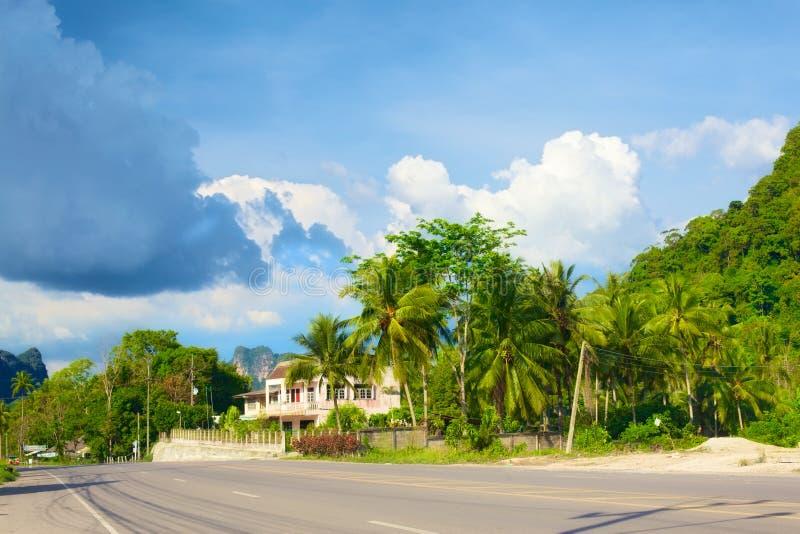 Download Highway in Krabi stock image. Image of palm, asphalt - 23678365