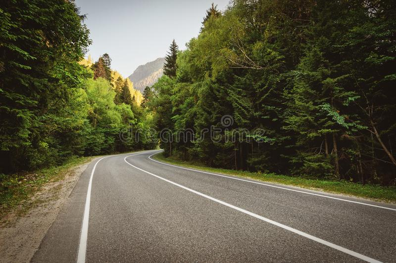 Highway in the mountains passes through the forest royalty free stock photography