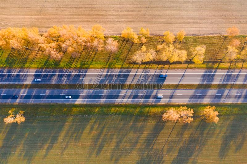 Highway with moving cars on a sunny autumn day. Top view. The track is illuminated by sunlight through the trees with yellow folia royalty free stock image