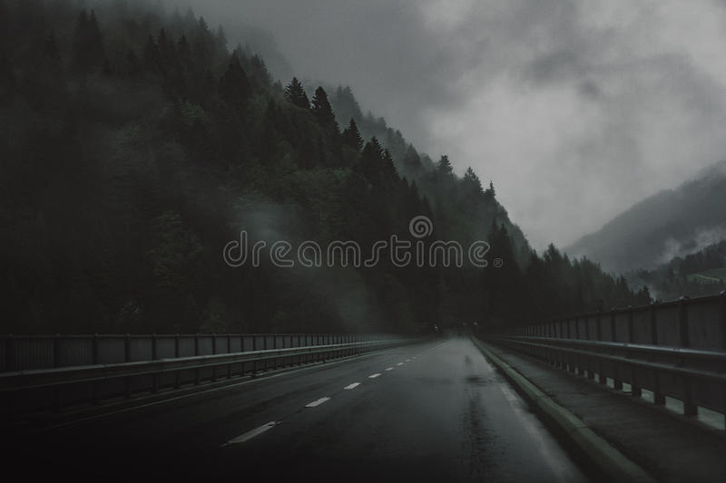 Highway Near Pine Trees Under Gray Cloudy Sky Free Public Domain Cc0 Image
