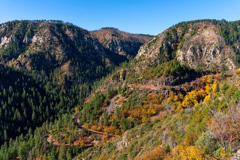 Highway 89A through Oak Creek Canyon, Arizona royalty free stock images