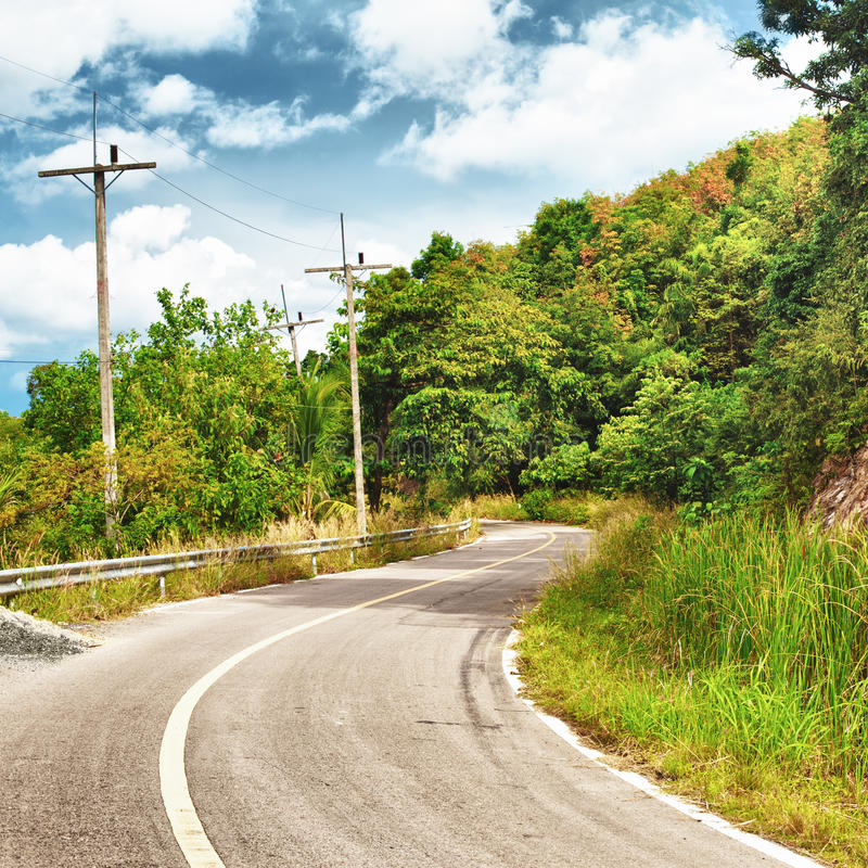 Download Highway in Thailand stock photo. Image of foliage, forest - 24450088