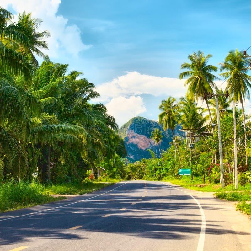 Download Highway in Thailand stock image. Image of highway, krabi - 26020275