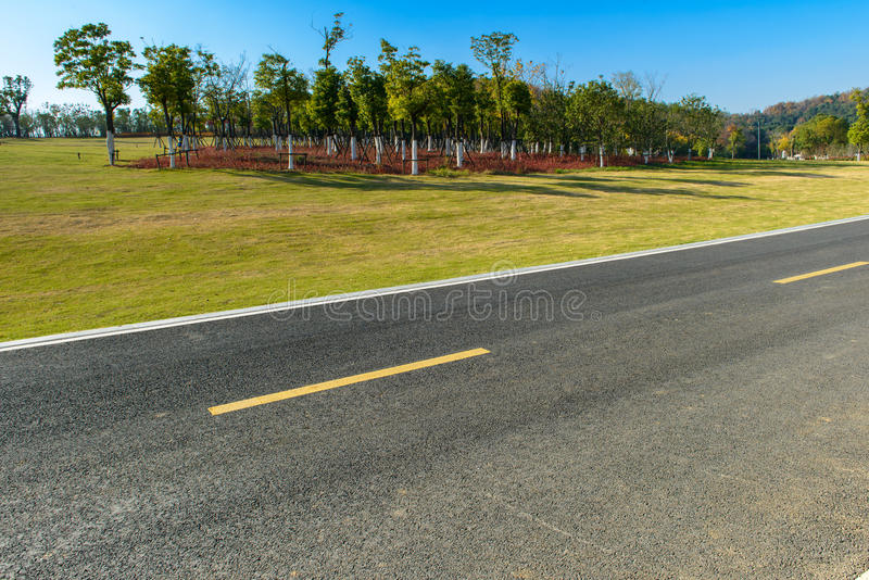 Download Highway beside woods stock photo. Image of travel, country - 36285114