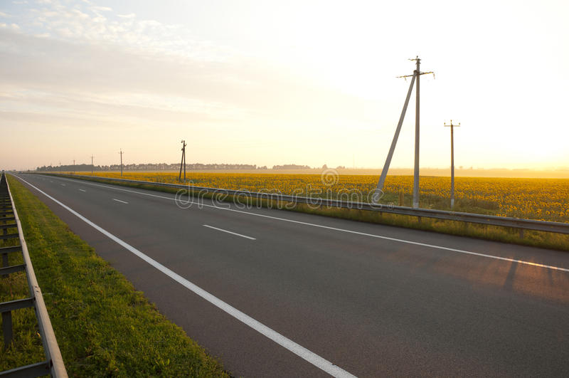 Download Highways Along A Field Of Sunflowers Stock Image - Image: 15845013