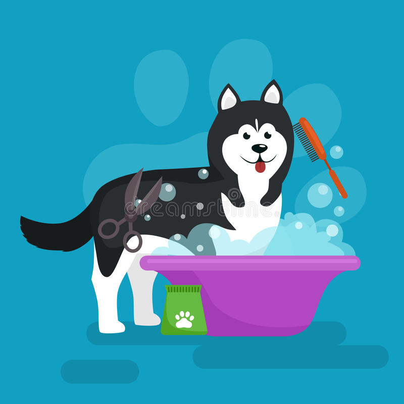 Higiene del pelo de perro Sistema del ejemplo del vector, preparación del animal doméstico y cuidado stock de ilustración