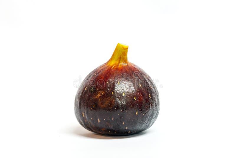 Higo--Genoa Gene negra, fruta de los ficus fotos de archivo libres de regalías