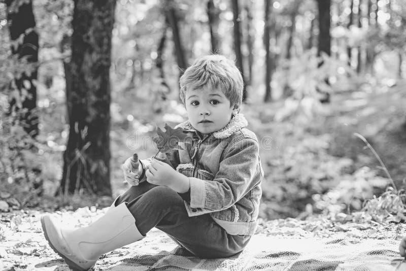 Hij houdt van wandelend Het jonge geitje zit op plaid bospicknick Het kind ontspant in de herfst de bos Bosschool openluchtonderw stock fotografie