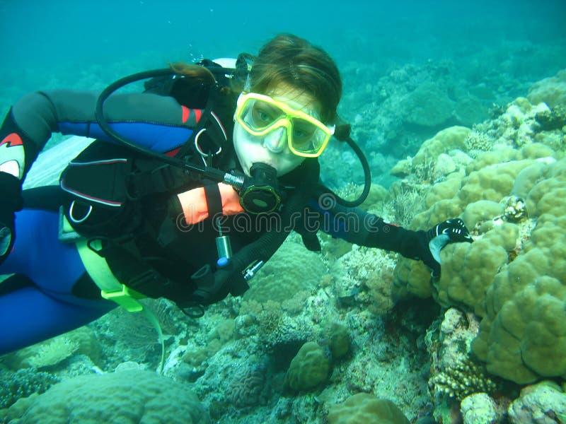 Hij portret van jonge vrouwenscuba-duiker onder water Zij is in volledig vrij duikenmateriaal: masker, regelgever, BCD Zij bekijk stock foto