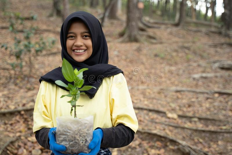 Hijab woman with new trees royalty free stock image