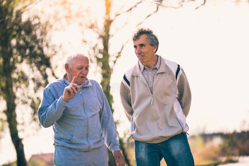 Hijo adulto que camina con su padre mayor en el parque fotos de archivo libres de regalías