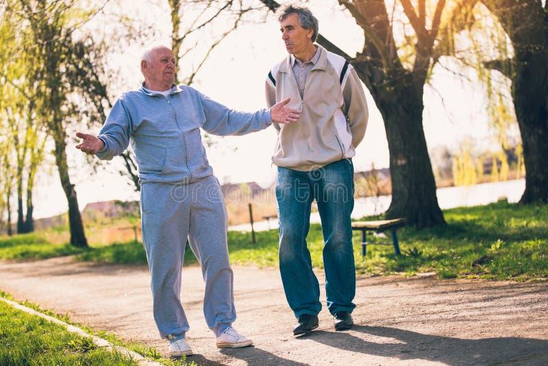 Hijo adulto que camina con su padre mayor en el parque fotos de archivo