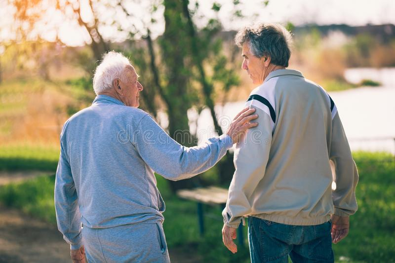 Hijo adulto que camina con su padre mayor en el parque foto de archivo