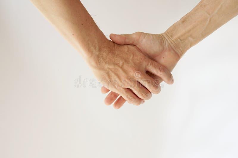 Hijo que lleva a cabo la mano de la mamá en el fondo blanco fotografía de archivo libre de regalías