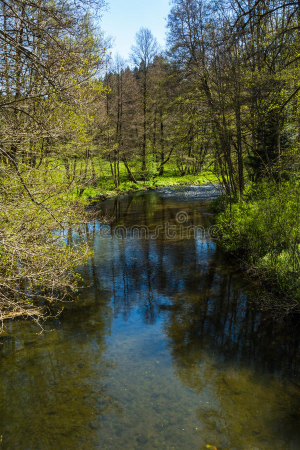 A hike in Altensteig, in the northern black forrest in the early spring royalty free stock photo