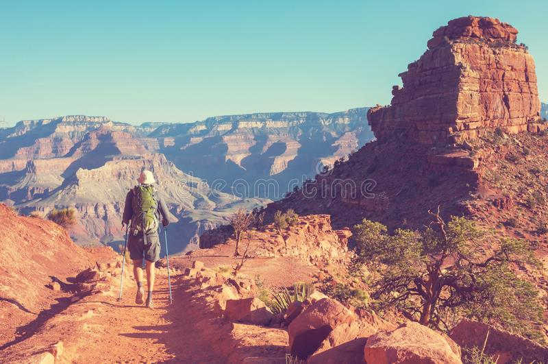 Hike in Grand Canyon. National Park royalty free stock photos