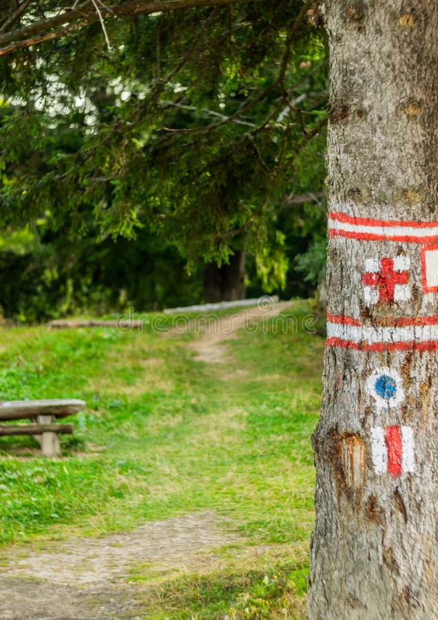 Hike marks painted on tree. Hiking signs. Hiking marks. Wooden table and bencj seen on the left. Red cross and on white square- stock photography