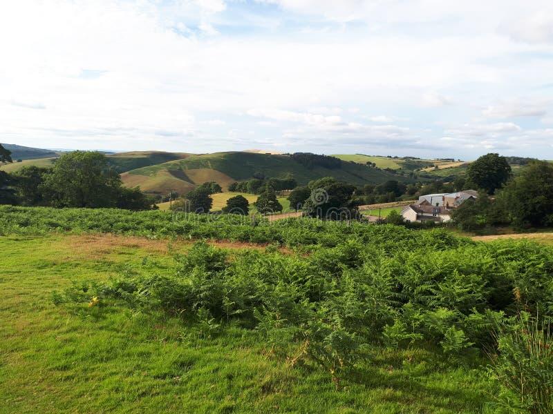 Hikeing através dos montes em Shropshire fotos de stock royalty free