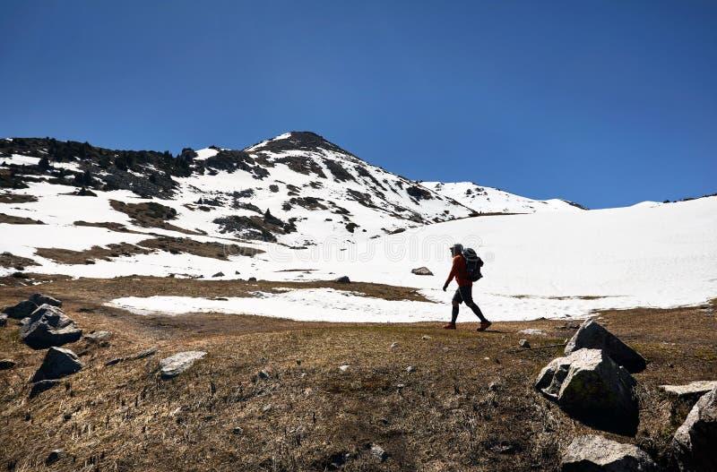 Hiker в горах стоковое изображение rf