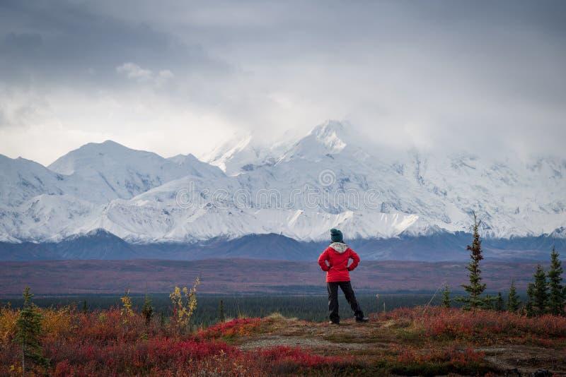 Hiker в горах стоковое фото rf