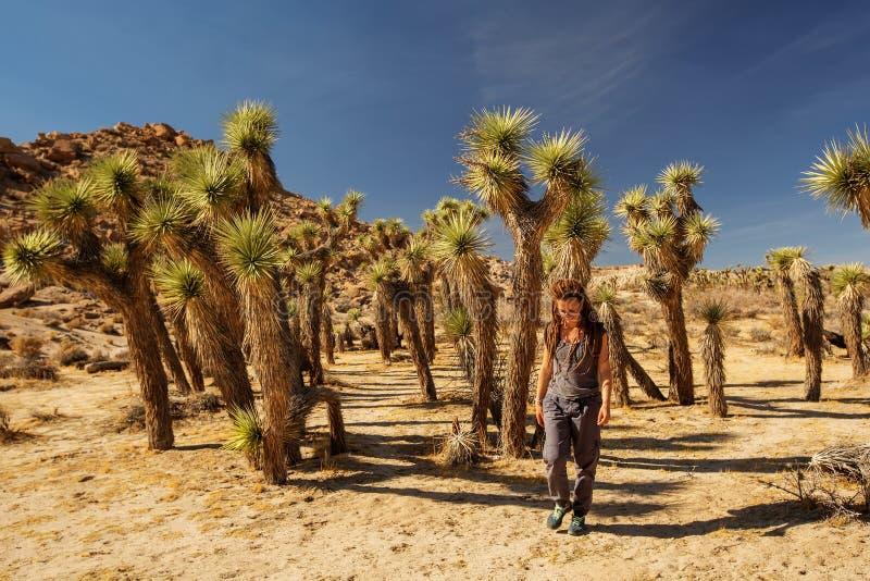Hiker в национальном парке дерева Иешуа стоковые изображения rf
