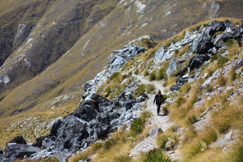 Hiker девушки на Бен Lomond стоковая фотография rf