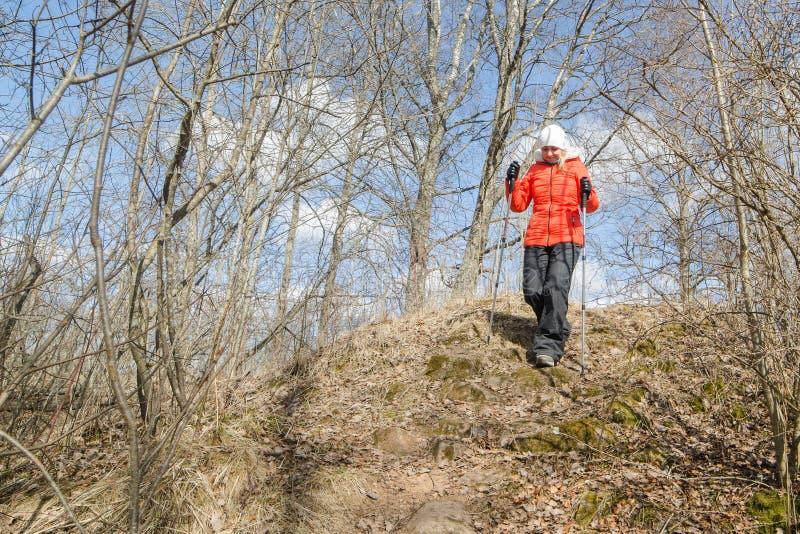 Hiker женщины со скандинавскими ручками идет на заход солнца стоковые фотографии rf