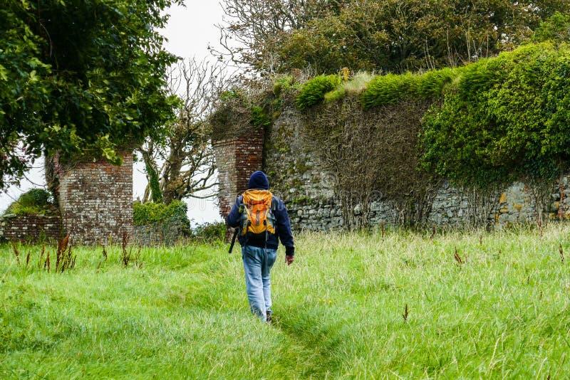 Hiker исследует изолированные отличительные старые свободные от крыш руины замка Carrigaholt, полуострова головы петли, Ирландии стоковое фото rf